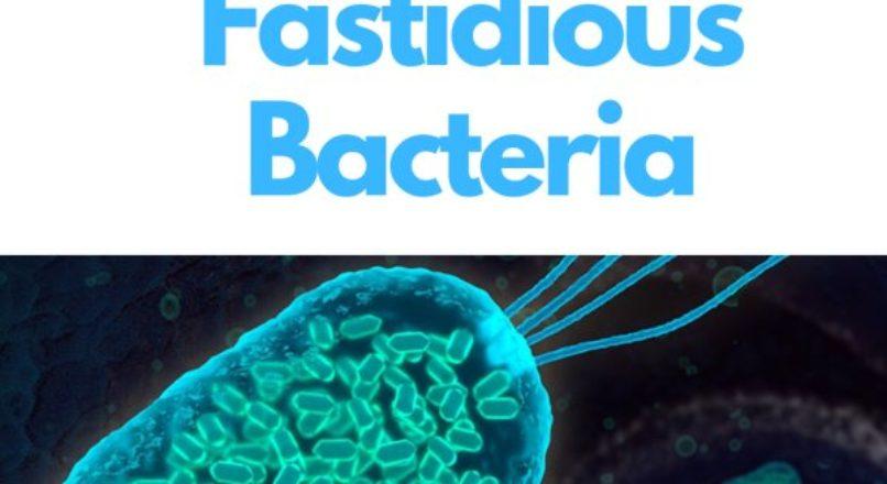 Fastidious Bacteria