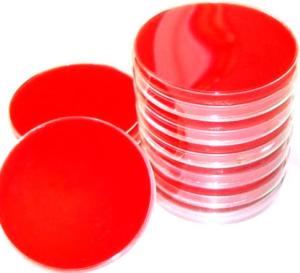 blood agar